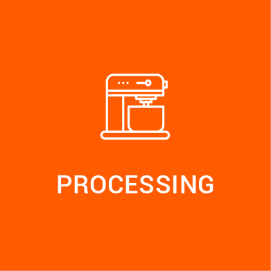 processingicon